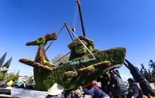 Hàng chục chậu hoa trưng bày ở Festival Hoa Đà Lạt bị kẻ gian bê trộm