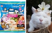 """Hội yêu mèo hẳn sẽ """"lụy tim"""" trước loại phở """"Meow Việt Nam"""" đáng yêu siêu cấp đang gây sốt tại Nhật Bản"""