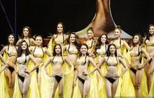 Top 10 toàn thí sinh cao trên 1m7, Hoa hậu Hoàn vũ Việt Nam liệu vẫn coi trọng yếu tố chiều cao?