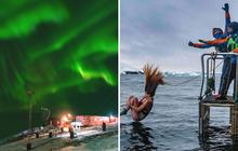 """Vén màn cuộc sống bí ẩn ở Nam Cực: Đầy đủ hoạt động ca múa nhạc và các trò chơi thể thao """"hành xác"""" không tưởng"""