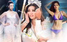 Choáng trước list thành tích của Tân Hoa hậu Hoàn vũ Việt Nam 2019: Từ học tập đến sự nghiệp, đấu trường sắc đẹp đều khủng!