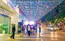 """Cây thông nón lá úp ngược """"siêu to khổng lồ"""" xuất hiện tại Vạn Hạnh Mall"""