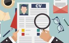4 bí quyết giúp CV của bạn dễ dàng được các nhà tuyển dụng tìm thấy