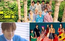 """Cube, Kakao và Play M chính thức mở """"Global Audition"""" tại Việt Nam"""