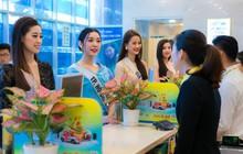 Top 60 Hoa hậu Hoàn vũ Việt Nam 2019 trải nghiệm sản phẩm dịch vụ tài chính hiện đại tại Nam A Bank