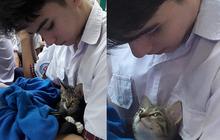 Góc nghiêng tựa nam thần của nam sinh ôm mèo gây xôn xao mạng xã hội