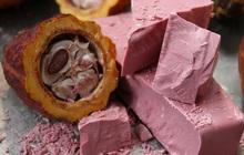 Tìm hiểu về loại sô cô la hảo hạng thứ 4 thế giới: Ruby Chocolate