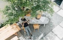 Ibasho coffee: Điểm hẹn của những tâm hồn yêu cái đẹp