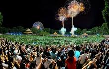 Check in không gian Giáng sinh triệu view tại Đầm Sen