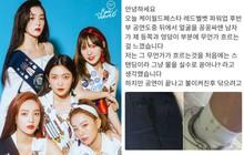 Sốc với trải nghiệm kinh hoàng của fangirl khi đi concert: Bị fan nam Red Velvet bị quấy rối tình dục ngay giữa nhạc hội