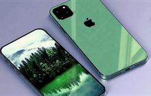 """2 tiết lộ """"vỡ tim"""" về iPhone XI: Xóa logo ở mặt lưng, màu xanh rêu đẹp nhất năm 2019"""