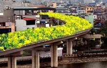 """Đường sắt Cát Linh - Hà Đông bỗng hóa """"hoa vàng trên cỏ xanh"""" qua bàn tay photoshop, thêm loạt lựa chọn bất ngờ được dân mạng ủng hộ rào rào"""
