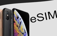 Viettel được Apple công nhận hỗ trợ chuẩn eSIM chính thức đầu tiên tại Việt Nam