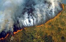 """Rừng Amazon đang chìm trong biển lửa và đây là những cách thiết thực nhất chúng ta có thể làm để giải cứu """"lá phổi xanh"""" của Trái Đất"""