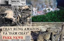 """Những """"đám cháy"""" fake news trên Facebook: Thương rừng Amazon bằng sự thật, đừng mua nước mắt người đọc"""