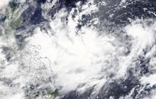 Nhiều chuyến bay ở Đài Loan (Trung Quốc) bị hủy do bão Bailu