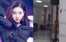 Phẫn nộ trước nghi vấn thành viên girlgroup nhà Cube bị nhân viên hành hung thô bạo ở hậu trường Soribada Awards 2019