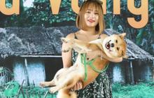 """""""Boss diễn viên"""" đầu tiên của điện ảnh Việt đã xuất hiện: """"Cậu Vàng"""" kháu khỉnh, mới 2 tuổi đã cực nhanh nhẹn và nghe lời nha mấy cô chú!"""