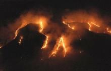 Hơn 4 vạn quân Brazil luôn sẵn sàng đối phó với cháy rừng Amazon