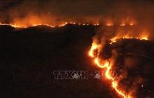 Hàng trăm đám cháy mới tại rừng mưa Amazon ở Brazil