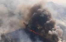Rừng Amazon ở Bolivia: Hơn 800.000 ha rừng bị tàn phá do cháy
