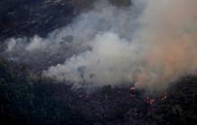 """CNN cập nhật tình hình chữa cháy rừng Amazon: """"Phía dưới máy bay là nghĩa địa vì chúng tôi chỉ thấy cái chết"""""""