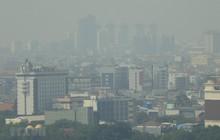 Indonesia sẽ chuyển thủ đô từ Jakarta đến Đông Kalimantan