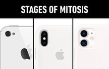 """Khi hội chuyên Sinh chế ảnh iPhone 11: Chỉ những người """"IQ 1000"""" mới xứng tầm hiểu hết ý nghĩa!"""