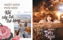 """Sẵn sàng lót dép hóng """"Khi Cây Trà Trổ Hoa"""" của chị đẹp mê trai trẻ Gong Hyo Jin với cẩm nang siêu yêu"""