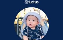 """Trọn bộ bí kíp """"Tớ đã học cách dùng Lotus như thế nào"""" dành cho những ai thích đu trend siêu tốc"""