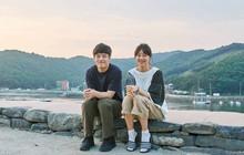 """""""Chị mẹ đơn thân"""" Gong Hyo Jin ở không """"rù quến"""" trai trẻ Kang Ha Neul ngay tập 1 Khi Cây Trà Trổ Hoa"""