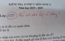 Cô giáo thu về 50 nghìn like chỉ nhờ một lời phê vài bài kiểm tra, đọc vào mới biết lỗi này trò nào cũng mắc phải đôi ba lần