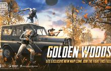 PUBG Mobile Lite ra bản cập nhật mới, xuất hiện bản đồ độc quyền mang tên Golden Woods