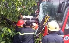 Bình Dương: Xe khách đâm vào gốc cây sau va chạm với xe máy, gần 40 hành khách la hét kêu cứu vì bị mắc kẹt