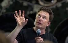 9 cuốn sách định hình thế giới quan, đưa Elon Musk đến thành công trong cả kinh doanh và cuộc sống