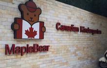 Sau vụ việc cô giáo nhốt trẻ vào tủ, cơ sở Maple Bear thông báo đóng cửa