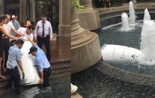 """Một con robot cũng tự tử tại đài phun nước công cộng, có lẽ vì công việc """"quá áp lực""""?"""