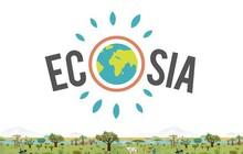 Muốn cứu Trái đất hãy dùng website này thay Google: Dành 80% lợi nhuận để trồng rừng, cứ 45 lượt tìm lại thêm một cây xanh mới được tạo
