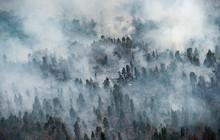 Cháy rừng Indonesia khiến các nước láng giềng 'nghẹt thở'
