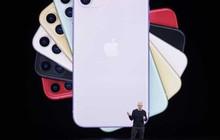 Thành công của iPhone 11 là lý do vì sao Tim Cook lại nâng chu kỳ làm mới iPhone từ 2 lên 3 năm