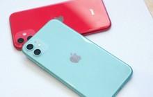 """iPhone 11 Lock giá rẻ tràn về Việt Nam: Đừng dại mua kẻo có ngày """"lợn lành thành lợn què"""""""