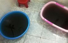 Nước sinh hoạt tại Khánh Hòa vẩn đục màu cà phê