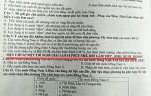 Đang làm bài kiểm tra đọc được lời nhắn nhủ của thầy giáo, học sinh chưa kịp vui thì chưng hửng vì pha troll cực mạnh