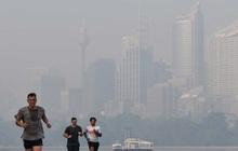 Khói mù dày đặc bao phủ trung tâm thành phố Sydney, Australia
