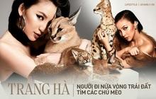 """Trang Hà - Cô gái mang những """"chú mèo"""" trị giá hàng tỷ đồng về Việt Nam và tiết lộ trào lưu nuôi thú cưng mới của giới đại gia và siêu giàu tại Sài Gòn"""