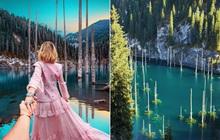 Hồ nước với những thân cây mọc ngược lên trời rùng rợn nhất thế giới, tìm ra nguyên nhân hiện tượng lạ ai cũng bất ngờ