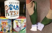 """Những hình ảnh chứng minh Nhật Bản là đất nước """"ngoài hành tinh"""", khách du lịch đến một lần là nhớ cả đời (Phần 9)"""