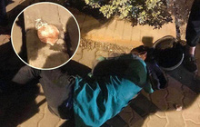 Hình ảnh tài xế Grabbike nằm gục bên túi bún giữa đêm lạnh khiến nhiều người xót xa