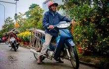 Chùm ảnh: Đội mưa rét chở cây cảnh thuê dịp Tết, người lao động kiếm tiền triệu mỗi ngày