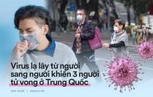 Tất cả thông tin cần biết về Coronavirus - virus lạ được Trung Quốc xác nhận lây từ người sang người, đã có 3 trường hợp tử vong